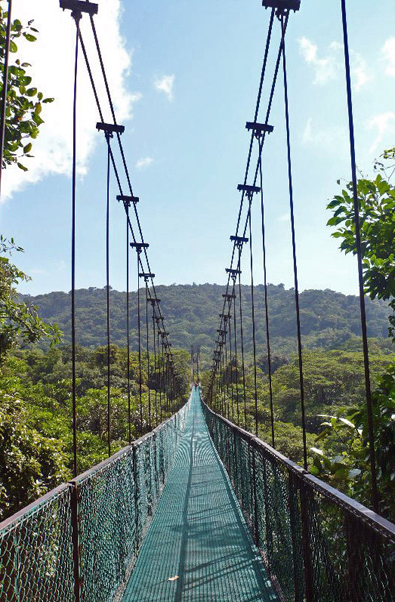Zip Lining above the Costa Rican jungle