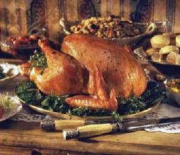 Real_turkey